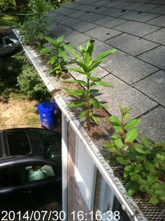 19 Awesome Gutter Guard Photos Images Gutter Protection