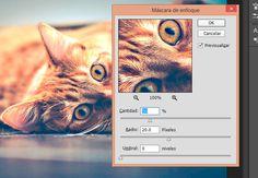 Tutorial Photoshop: Enfocar y dar nitidez a una foto