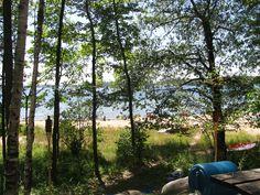 Site 333 Beaver Dams