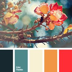 On the background of warm red and orange, turquoise, an initially cold color, acquires a warm, gentle tone. This palette is perfect for a living room, but.
