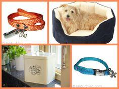 Nouveautés colliers, corbeilles et boite à friandises pour chien et chat
