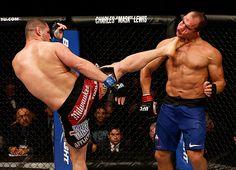 #UFC 155: Junior Dos Santos vs Cain Velasquez, and Jim Miller vs Joe Lauzon Full Fight Highlights #Video