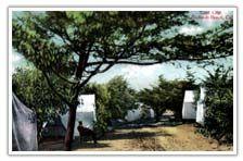 City of Redondo Beach Website - History of Redondo Beach