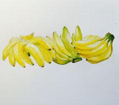 #watercolor #botanicalillustration #botanic #bananas #interiordesignbysonjabelle #СоняБелле #illustration #sketch #sketches #sketching #sonjassketch #illustratorsonjabelle #interiordecor #interiordesign #фрукты #иллюстрация #графика #интерьер #дизайнеринтерьера #дизайнер #скетчбукдизайнера #скетчбук #акварель #акварельнаяиллюстрация #бананы