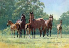 Sanctuary - Mares and Foals. Limited Edition Mare and Foal Print by Equestrian Artist Katy Sodeau Beautiful Horse Pictures, Beautiful Horses, Horse Artwork, Baby Horses, Horse Drawings, Horse Print, Equine Art, Wildlife Art, Western Art