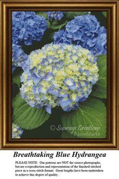 Breathtaking Blue Hydrangea, FL-87
