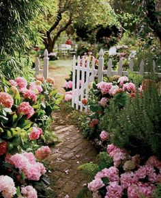 8 All Time Best Cool Ideas: Garden Ideas Diy Mason Jars backyard garden patio planter boxes.Garden Ideas For Small Spaces Indoor backyard garden inspiration trees.Backyard Garden Beds How To Build. Garden Paths, Garden Landscaping, Landscaping Ideas, Garden Edging, Backyard Ideas, Farmhouse Landscaping, Hydrangea Landscaping, Garden Fences, Privacy Landscaping