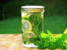 Recette d'eau infusée à la mélisse #infusion #the #melisse #plantesmedicinales