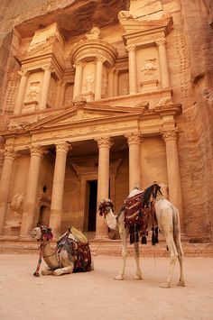 1000 places to go before i die: Petra, Jordan