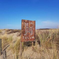 Tulum, South Holland, Caesar Salad, Trip Advisor, Coffee, Google, Pictures, Delicious Sandwiches, Wedding