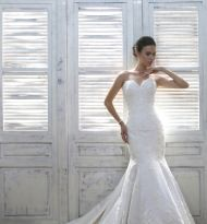 Jacklyn (2) Designer Wedding Gowns, Designer Gowns, Plus Size Designers, Veil, Bridal Gowns, High Fashion, Bride, Lace, Fashion Design
