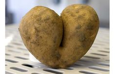 Freaky fruit and vile vegetables: mother nature's freaks of nature ...