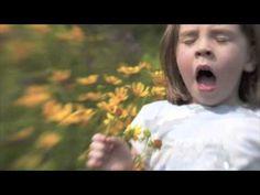C1 Week 2~ VIDEO 5 Kingdoms of Living Things
