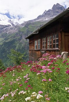 Der Alm Onkel/ mountain cabin in Switzerland by sweetcaza Beautiful World, Beautiful Places, Vie Simple, Cabin In The Woods, Cabins And Cottages, Log Cabins, Cabin Homes, Log Homes, Wild Flowers