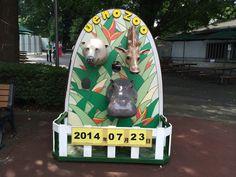 歌舞伎俳優、お相撲さん、動物にだってなれちゃう!?顔出しパネルで記念写真! | MATCHA - 訪日外国人観光客向けWebマガジン
