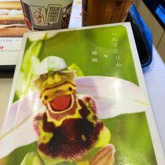 """""""∞""""wonderFeel, グッドモーニン!ブックカフェ。  今日の一冊は、  「へんてこりんな植物」..."""