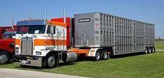 1988 Kenworth Truck Model K100E with Livestock Trailer