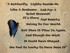 Butterfly Wings | Butterfly Poems & Quotes | Pinterest ...