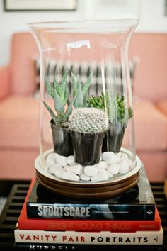 Creative DIY Indoor Gardens