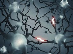 Potential therapy for second most common form of dementia - http://scienceblog.com/75628/potential-therapy-second-common-form-dementia/