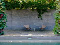 butterfly chairs by the pool