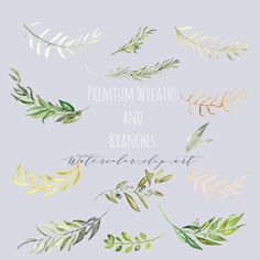 Premium wreaths and branches. Watercolor clip art by LABFcreations