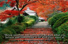 """""""Being spiritual has nothing to do with what you believe and everything to do with your state of consciousness."""" ― Eckhart Tolle http://the-spiritual-life.com/"""