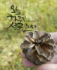 Korean Quotes, Good Morning, Place Cards, Place Card Holders, Words, Floral, Flowers, Blog, Poem