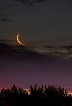 NEW MOON IN ARIES – Let the fireworks begin! (March 30, 2014) by Anne Reith, Ph.D.   Soul Life Times Magazine www.soullifetimes.com
