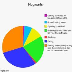 Hogwarts | Funny,Pie Charts