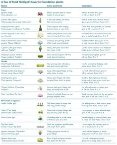 A few of Todd Phillippis favorite foundation plants. Click on the image to enlarge the chart to a readable size.