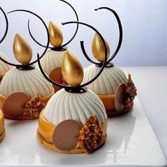 haollee# world master class # with Master Chef Michel Willaume. End of a complete success! Shared by Where YoUth Rise. Small Desserts, Gourmet Desserts, Fancy Desserts, Plated Desserts, Delicious Desserts, Dark Chocolate Mousse, Chocolate Art, Pastry Art, Beautiful Desserts