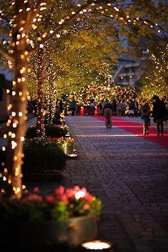Ya se empiezan a ver decoraciones navideñas.. Si vais a decorar vuestro jardín o terraza para la navidad, estad atentos para los trucos y consejos que compartiremos con vosotros!