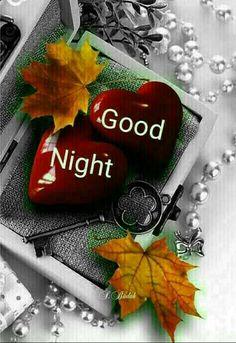 Gute Nacht Daizo,mein Liebling. ⭐Träum was Schönes.... :)