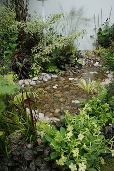 Great garden creek. Small enough I could do this.
