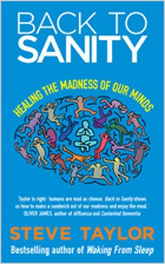 Back To Sanity: Healing the Madness of Our Minds - Steve Taylor