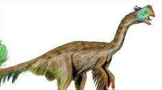 GIGANTORAPTOR   Gigantoraptor erlianensis' [Wikipedia Commons] http://commons ...