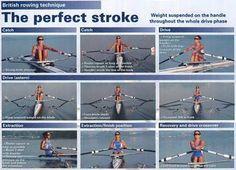 British rowing technique - The perfect stroke: HHBC
