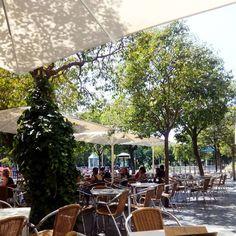 No se está mal en la terraza de la @cafeteriafaustino 😁 #zaragoza