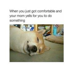 Its always when you get comfortable
