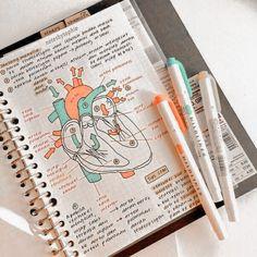 School Organization Notes, Study Organization, Nursing School Notes, College Notes, Math Notes, Science Notes, Revision Notes, Life Hacks For School, School Study Tips