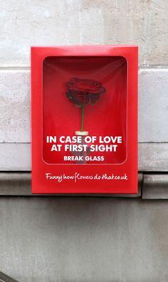 En caso de amor a primera vista: Rompe el cristal.