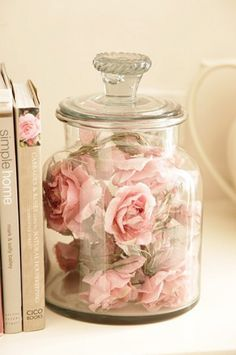 Pale pink roses ensconced in a jar with similarly hued books
