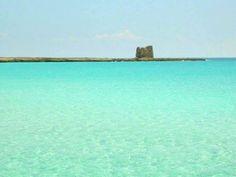 Non è a dir poco spettacolare questo scatto che ritrae la marina di Lizzano, a Taranto? Un colore d'acqua mai visto.  www.nelsalento.com  #salento