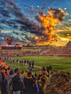 Pause for a moment and take a look at this pic. I love Texas Tech.....Thank you for your time.