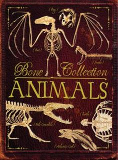 Bones Collection  - Animals