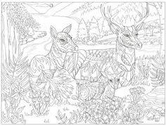 die 51 besten bilder von mandala tiere | mandala tiere