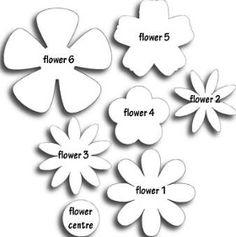 more petals/flowers