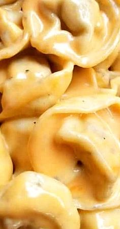 This Creamy Mac and Cheese Tortellini is an excellent recipe for you cheesy pasta lovers out there! Cheese Tortellini Recipes, Pasta Recipes, Cooking Recipes, Lean Recipes, Nachos, Best Easy Dinner Recipes, Mac And Cheese Homemade, Pasta Dinners, Recipes