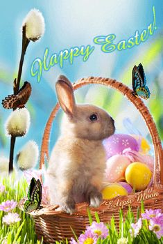 Happy Easter Nature Gif easter happy easter easter gifs easter quotes and sayings happy easter images images jesus Happy Easter Nature Gif Happy Easter Gif, Happy Easter Wishes, Ostern Wallpaper, Easter Bunny Eggs, Easter Quotes, Fete Halloween, Easter Pictures, Nature Gif, Easter Parade